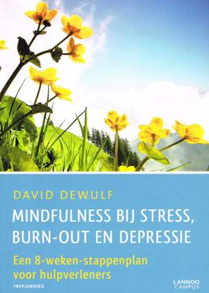cover van het boek mindfulnesstraining david dewulf