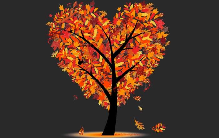 boom bruin achtergrond