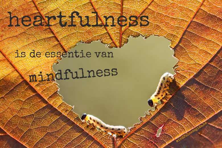 heartfulness op een herfstig blad