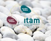 screenshot website Itam